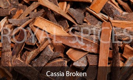 Broken Cassia